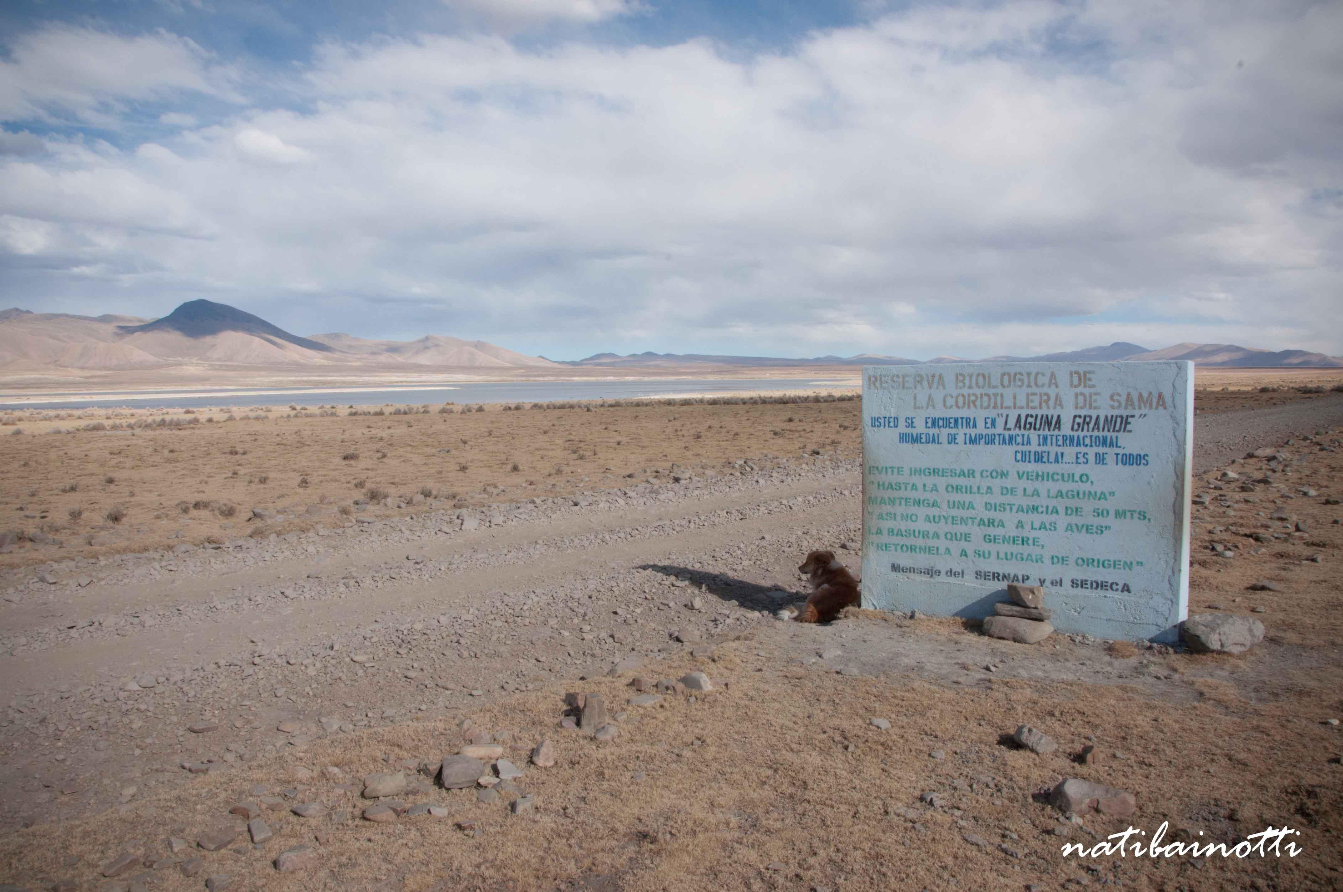 En alguna parte de la Reserva de Sama.
