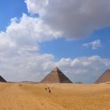 camelos en piramides de egipto