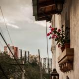 quito balcones flores