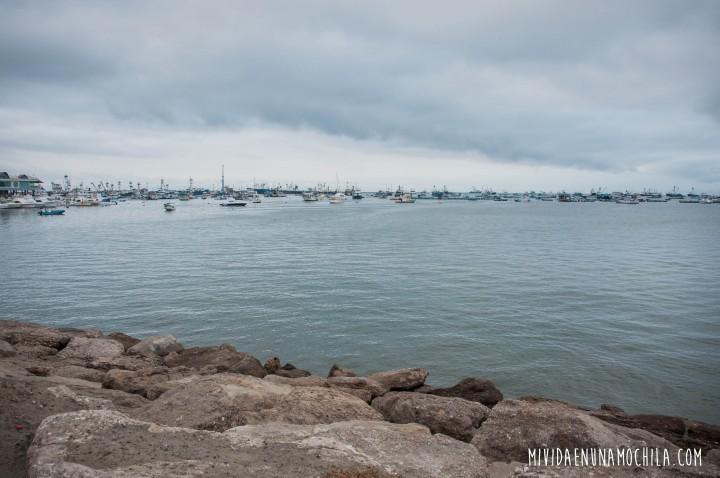manta puerto