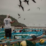 aves puerto lopez