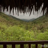 vista bosque húmedo rio blanco