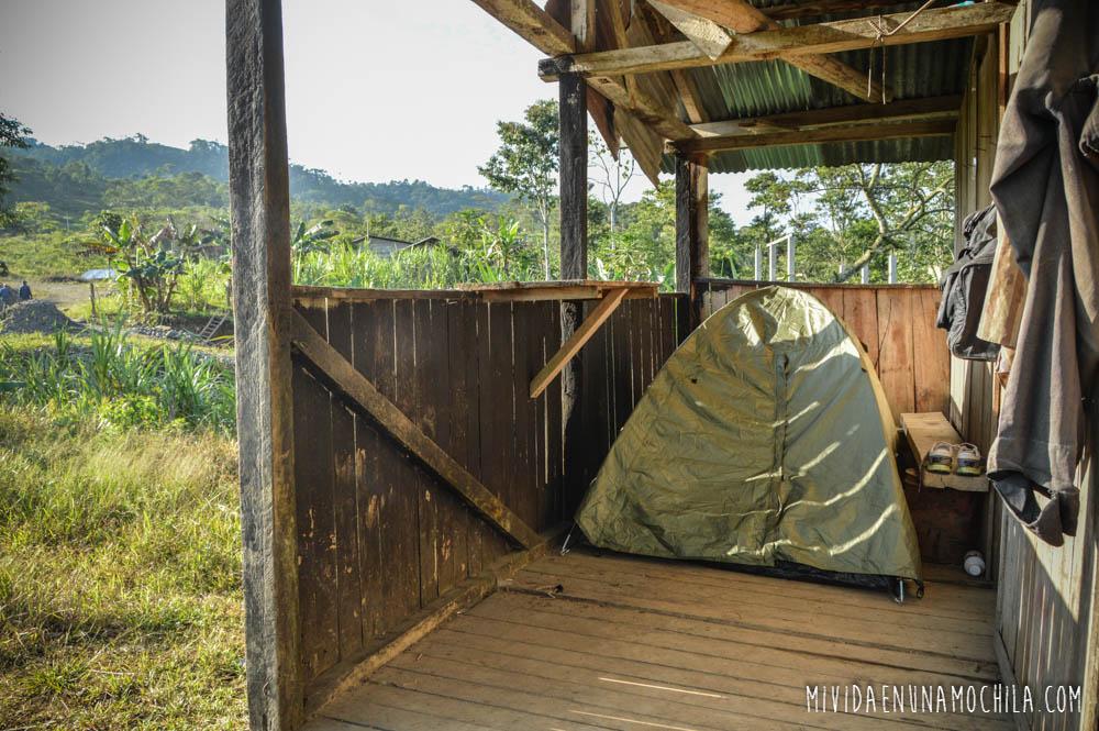 carpa santa clara ecuador amazonía