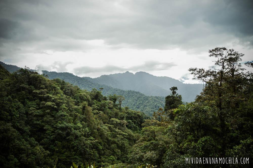 reserva nacional antisana