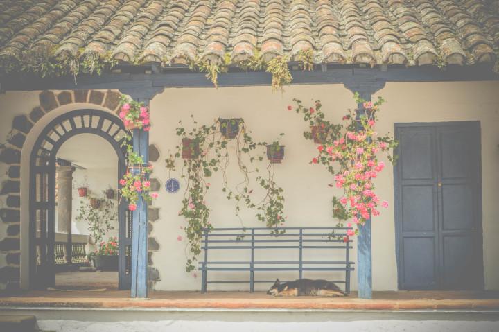 hacienda zuleta ecuador (11)