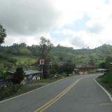 ruta timbio