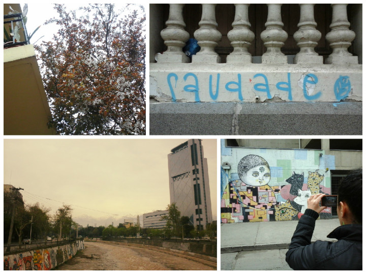 santiago chile paredes plantas mapocho murales street art
